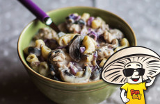 FunGuy Mushrooms Mac and Cheese with Beefy Beer and Cabbage