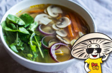 FunGuy Clean Vegetable Soup