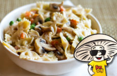 FunGuy Spring Bow Tie Pasta with Four Cheese Alfredo Sauce