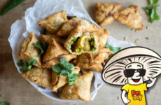 FunGuy Vegan Mini Samosas