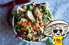 FunGuy's Crunchy Thai Chicken Salad