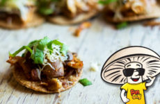 FunGuy's Shredded Chicken One Bite Tostadas